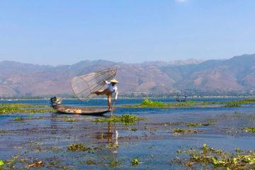 Inle-Lake-visser