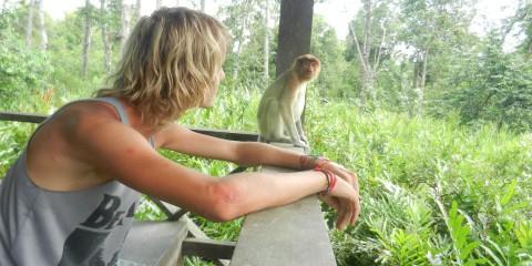 Ik met neusaap (Borneo)