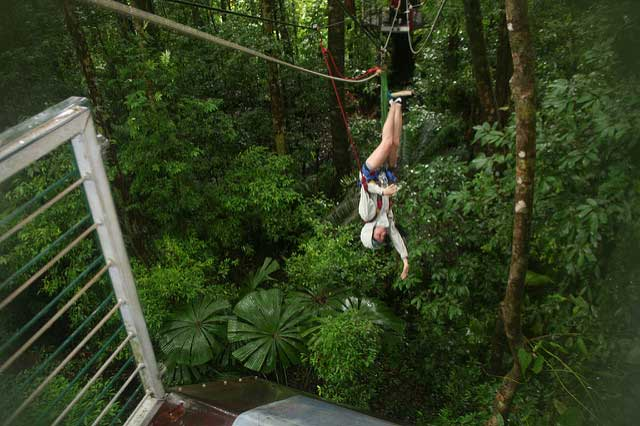 Jungle-surfen-Daintree