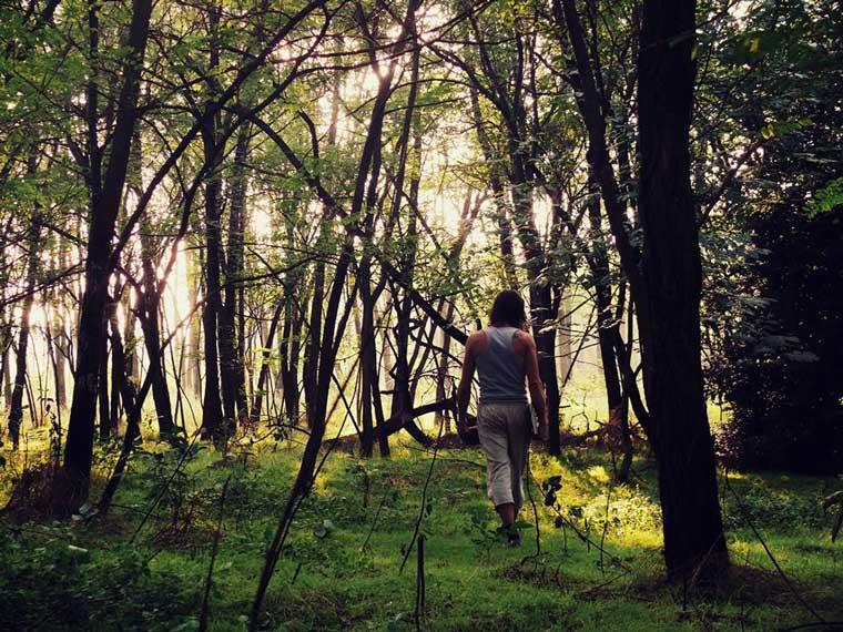 Wandelen in de prachtige omgeving