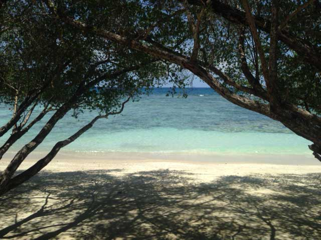 Bij aankomst zie je de heldere zee onder de bomen doorkomen