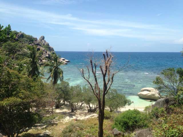 Uitzicht Freedom Beach