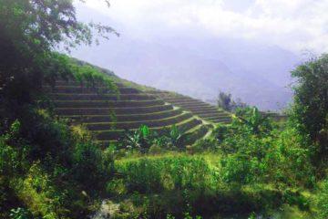 Trekking-Sapa-uitzicht-1