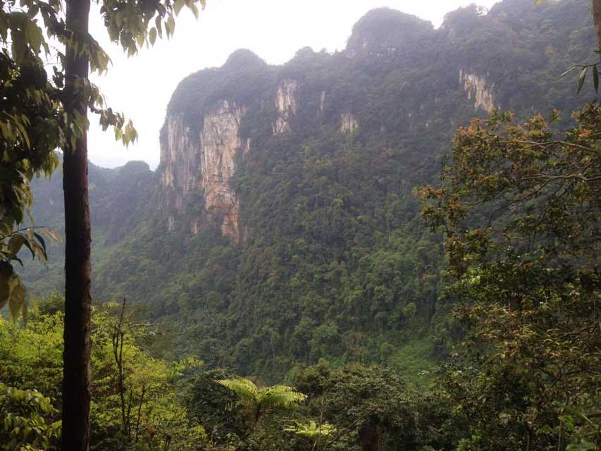 Jungle-trekking-Phong-Nha-viewpoint