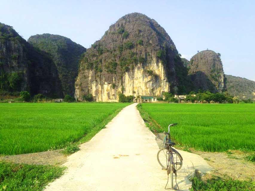 Thai-Vi-Temple