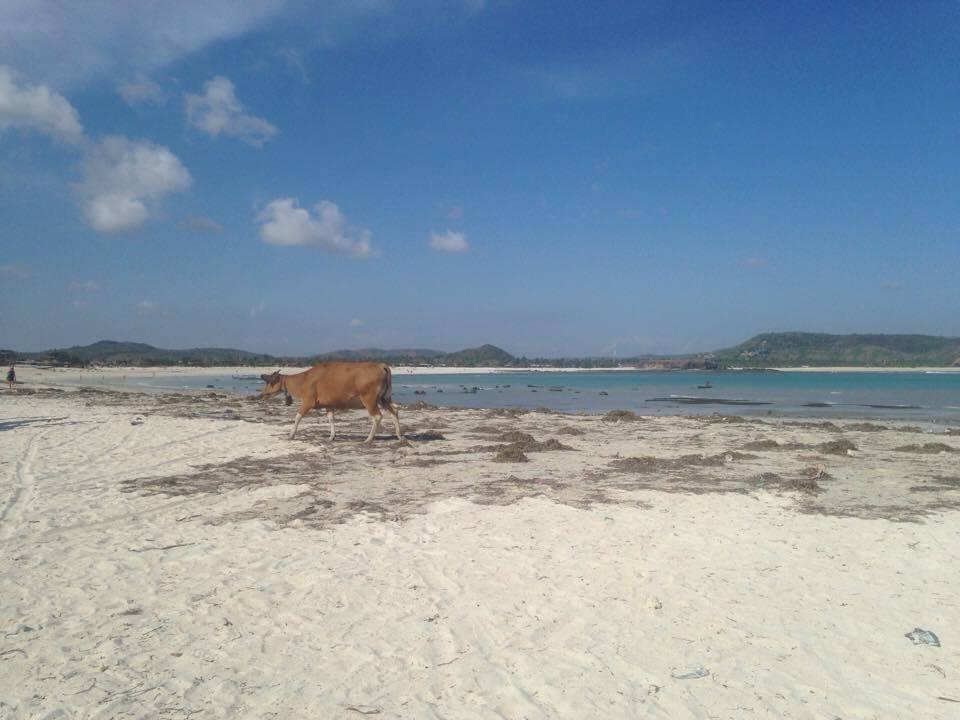 Tanjung Aan Kuta