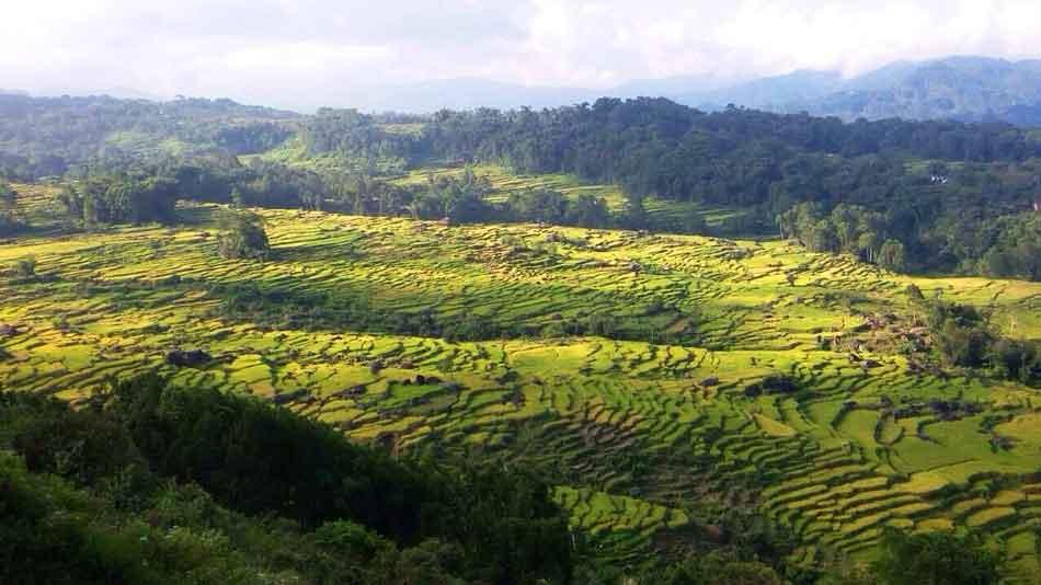 Batutumonga-Toraja