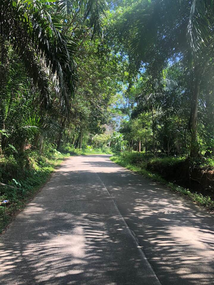 Natuur Koh Yao Noi