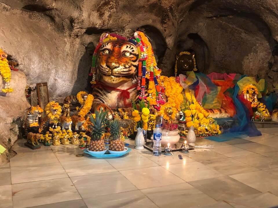 Tiger Cave Tempel tijger