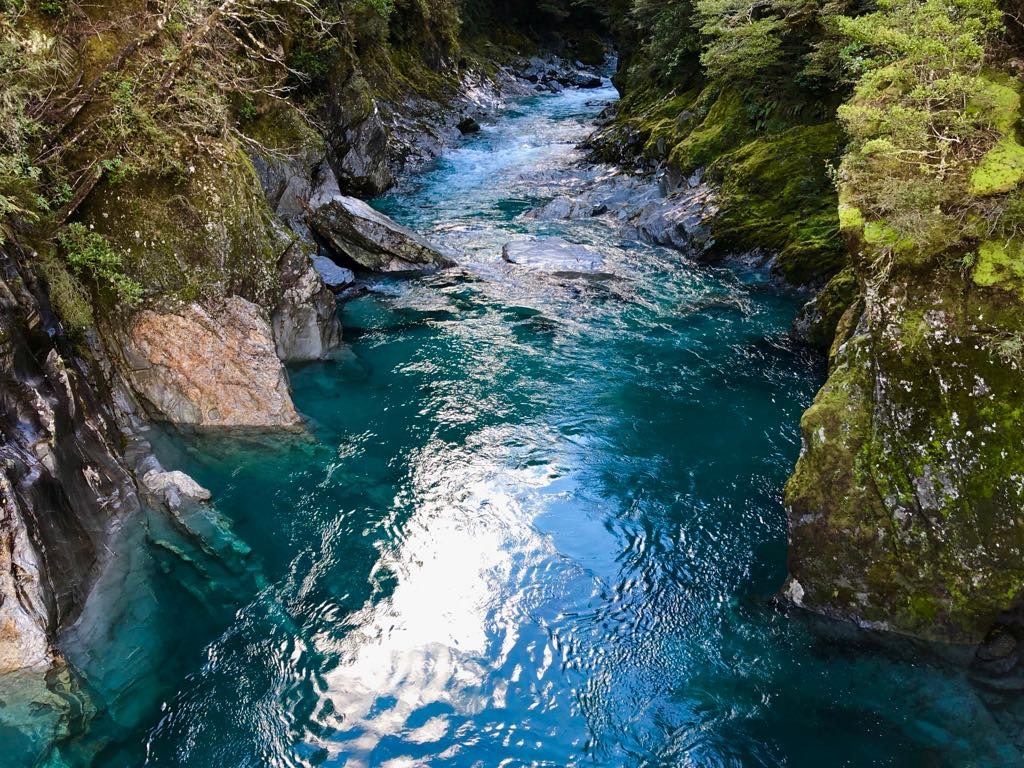 Blue Pools Track Haast Pass