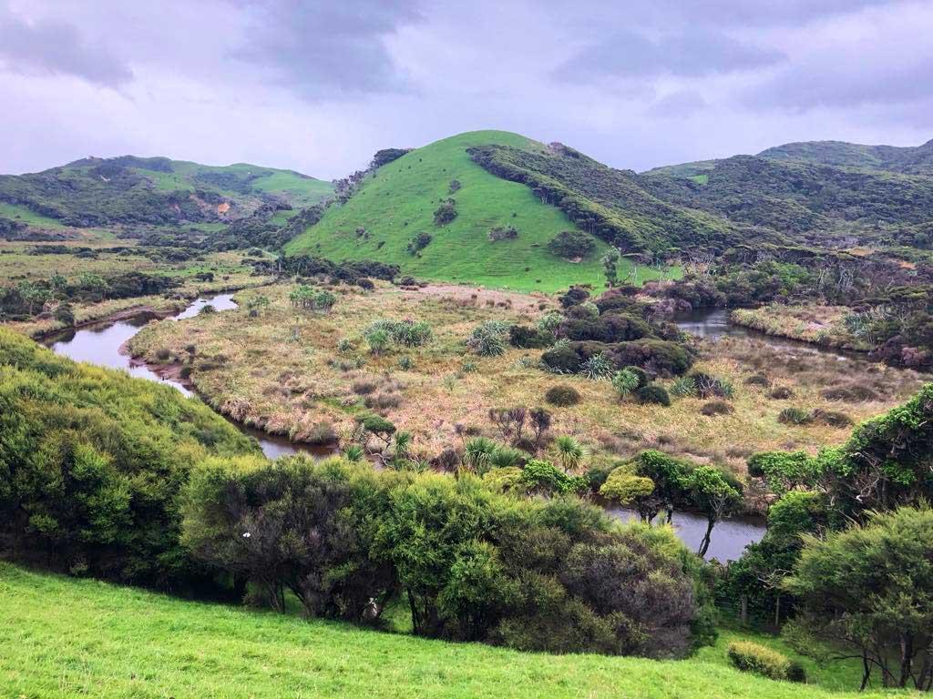 Green-Hills-Track-2
