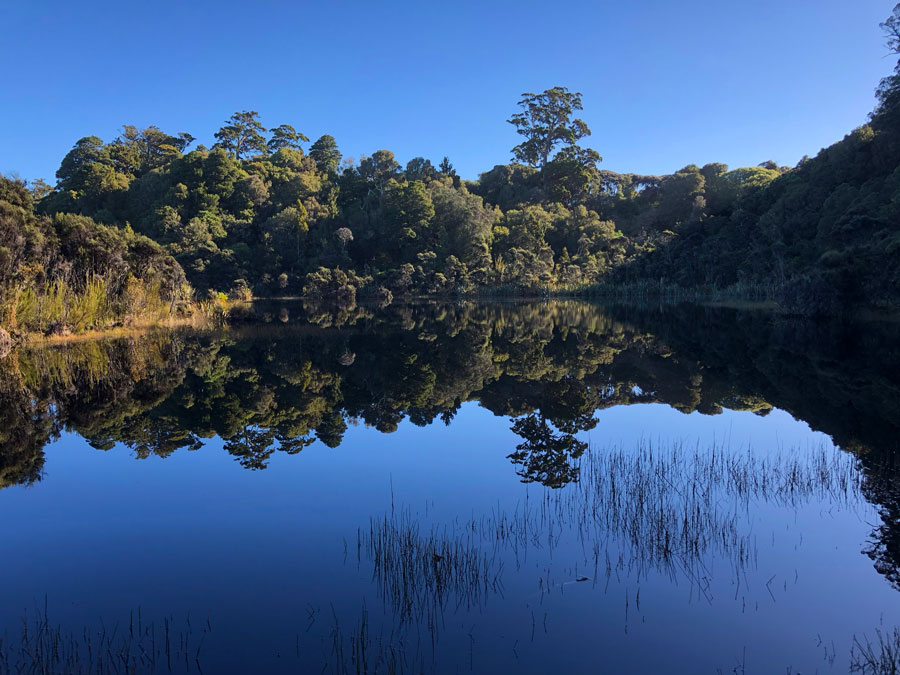 Lake-Wilkie-Catlins