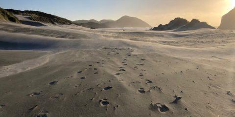 Wharariki Beach woestijn