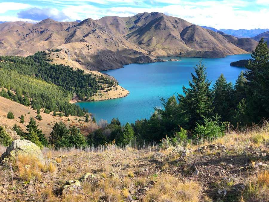 Lake Benmore uitzicht 1
