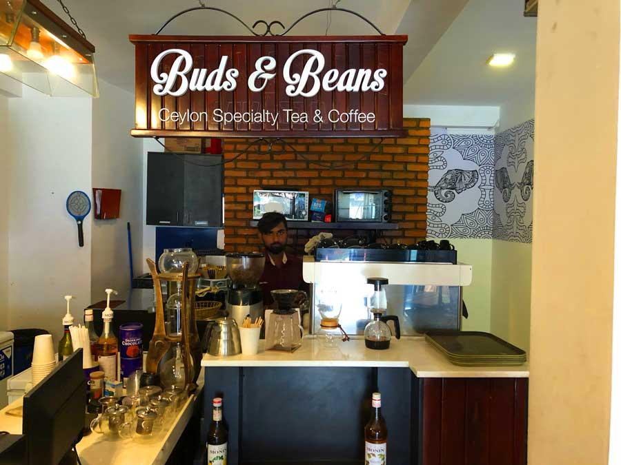 Ella-Buds-&-Beans