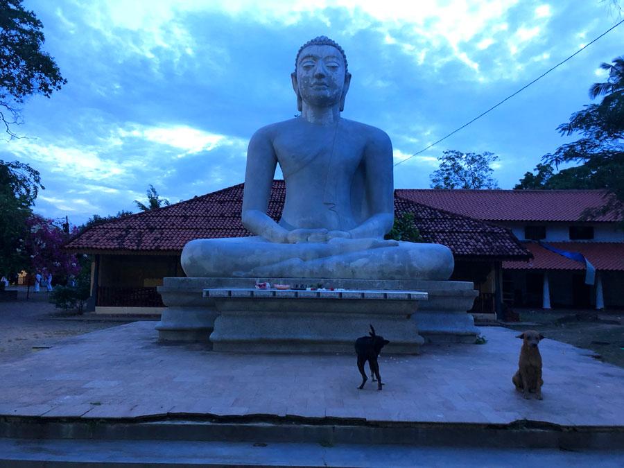 Kasagala-Raja-Maha-Vihara