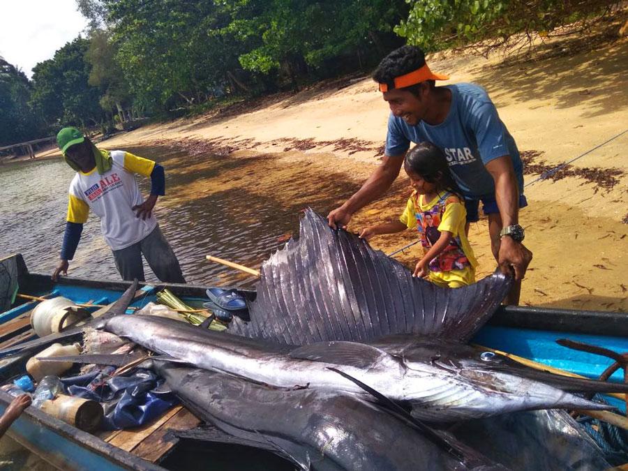 Pulau-Hatta-vissen