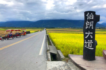 Taitung-Brown's-Road