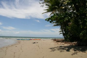 Cape Tribulation strand