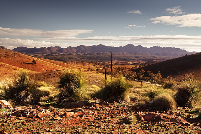 Flinders-Ranges-National-Park