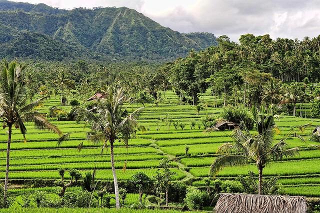 Sidemen Bali