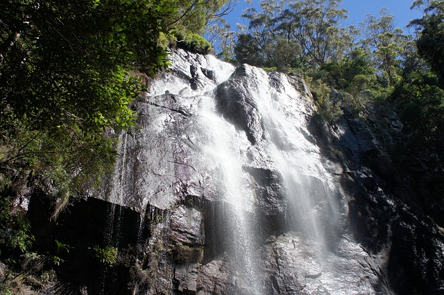 Waterval Springbrook National Park